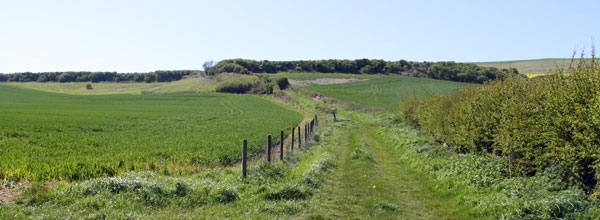 walk the paths and trails and coastal path on the isle of wight